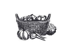 pomme de terre monalisa