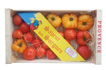 Tableau de tomates